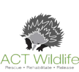 ACT Wildlife Rescue Logo